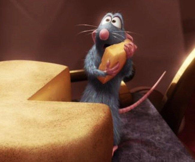 raton-con-queso.jpg