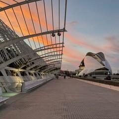 Foto 2 de 17 de la galería fotos-tomadas-con-el-ipad-air-2020 en Applesfera