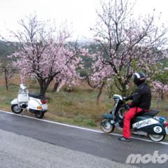 Foto 7 de 8 de la galería la-ruta-fallida-de-los-almendros-en-flor en Motorpasion Moto