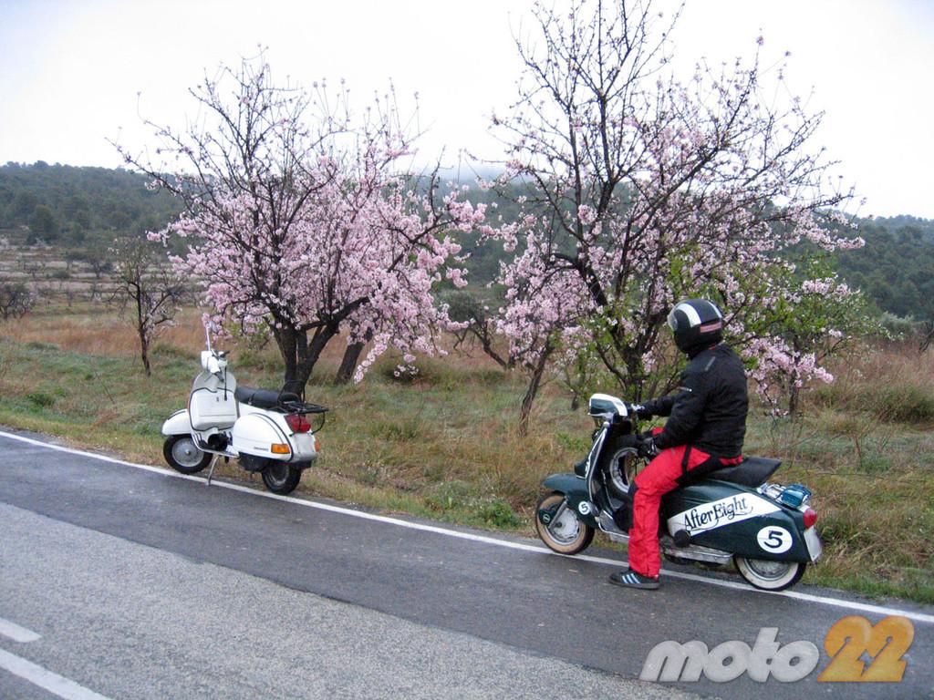 Foto de La ruta (fallida) de los almendros en flor (7/8)