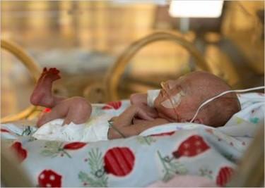 """Habitaciones """"útero"""" para los bebés prematuros"""
