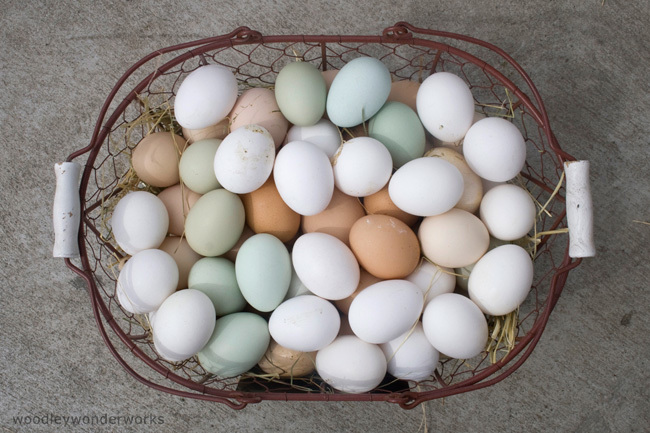 Huevos blancos 2