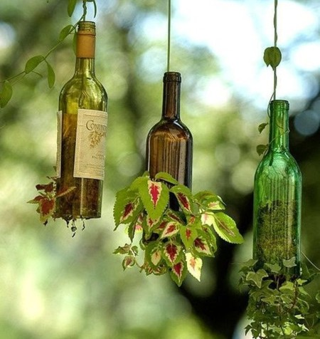 Glass Bottle Hanging Planters