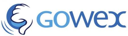 ¿Cómo funcionaba Gowex?