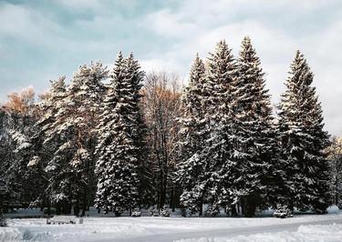Los 39 motivos por los que nos encanta que llegue el invierno... aunque venga con frío