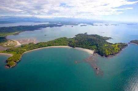 Avistamiento de aves y de monos en Panamá