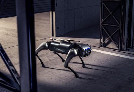 Cyberdog 010