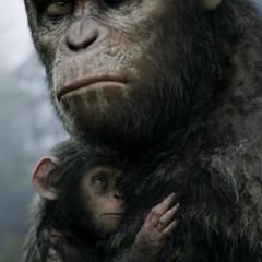 Foto 5 de 9 de la galería el-amanecer-del-planeta-de-los-simios-carteles en Espinof