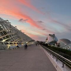 Foto 5 de 17 de la galería fotos-tomadas-con-el-ipad-air-2020 en Applesfera