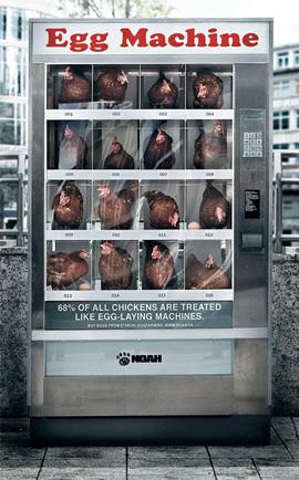 Máquina vendedora de huevos frescos