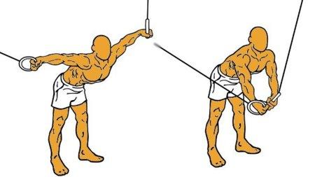 Guía para principiantes (XXXV): Cruce de poleas de pie