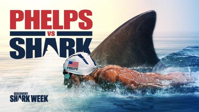 56 razones por las que Michael Phelps no debería haber retado a un tiburón blanco en mar abierto
