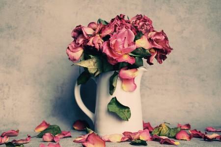 rosas-secas-te