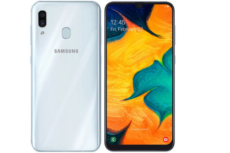 Samsung Galaxy A30 Entero