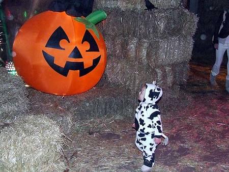 Divertida celebración de Halloween en los zoológicos