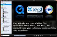 Lanzado Miro 1.0, la televisión por Internet