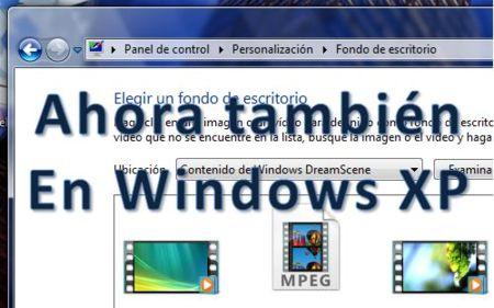 Video como Wallpaper en Windows XP