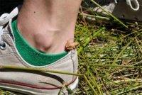 Un ejercicio para fortalecer el tobillo y mejorar los resultados de la carrera