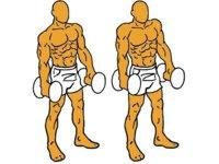 Guía para principiantes (XXI): Encogimiento de hombros