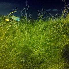 Foto 16 de 46 de la galería lg-g8x-thinq-galeria en Xataka