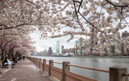 Nueva York en primavera