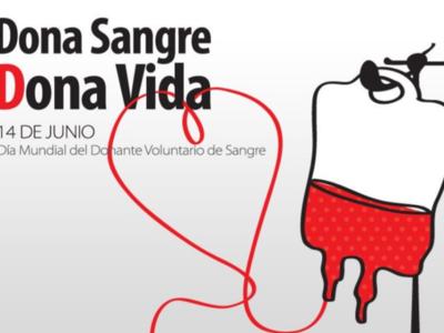 Día Mundial del Donante de Sangre: ¿qué se hace con la sangre después de donarla?