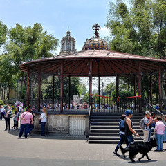Foto 20 de 36 de la galería fotos-con-el-lg-g6 en Xataka México