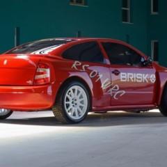 Foto 8 de 19 de la galería brisk-rs-01-wrc en Motorpasión