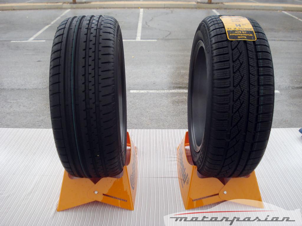 Foto de Neumáticos de invierno (prueba) (28/28)