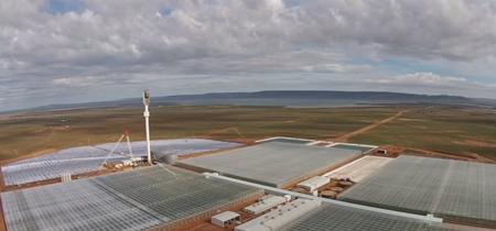 Este futurista invernadero funciona en el desierto tan sólo con agua marina y sol
