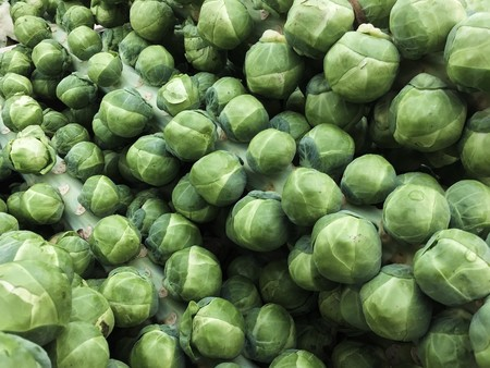 Sprouts 2582679 1280