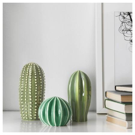Cactus Buena