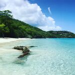 Saint John: viaje a un parque natural en las Islas Vírgenes