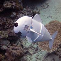 Ahora podremos documentar la vida marina gracias a este pez robótico: SoFi