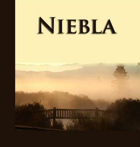 Diccionario Literario: nivola