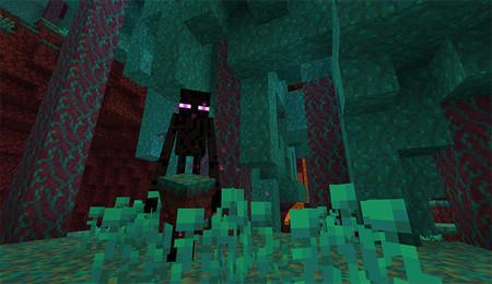 Minecraft Nether Warped Forest 02