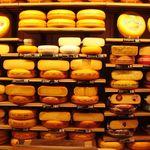 Si eres intolerante a la lactosa ¿puedes comer queso?