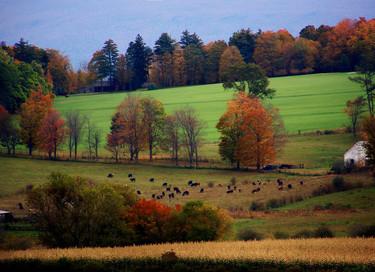 Bienvenido otoño: los 11 paisajes de campiña más relajantes del planeta