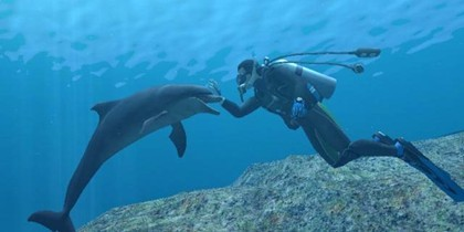 jugando con los delfines