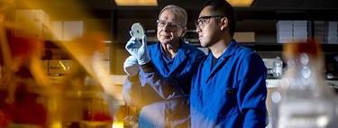 Tras décadas buscando, hemos encontrado un nuevo antibiótico en el tracto digestivo de un gusano microscópico