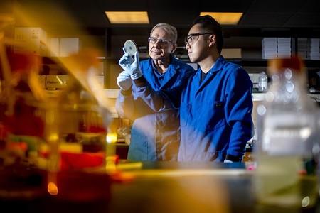 Tras décadas buscando, hemos encontrado un nuevo (y prometedor) antibiótico en el tracto digestivo de un gusano microscópico