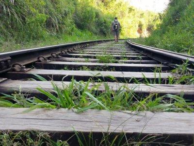 Compañeros de Ruta: de la India a pasando por la Toscana de Valencia