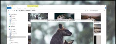 QuickLook añade añade vista previa de todo tipo de archivos al explorador de Windows