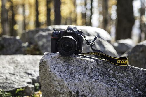 Nikon D850, Canon EOS M100, Panasonic Lumix GX800 y más cámaras, objetivos y accesorios en oferta: Llega Cazando Gangas