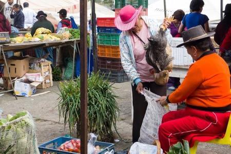 mercado-villa-leyva.jpg