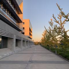 Foto 7 de 11 de la galería fotos-tomadas-con-el-iphone-xr en Applesfera