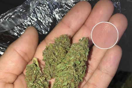 Un traficante vendía marihuana en la Dark Web de forma anónima: lo identificaron gracias a una foto de sus dedos