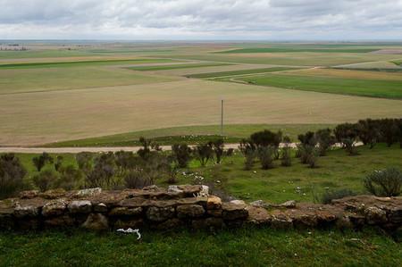 Tierra Campos