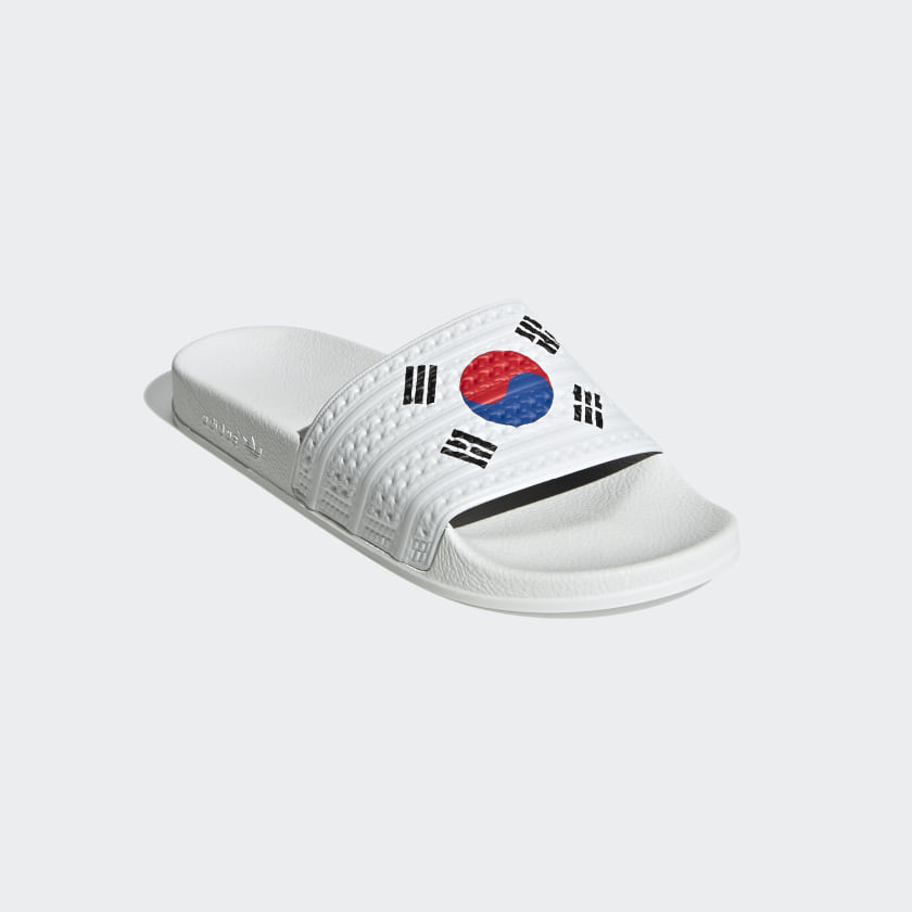 Con la bandera de Corea del Sur.