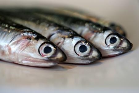 Pescado6